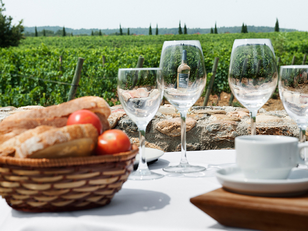 Esmorzar entre vinyes, a La Vinyeta