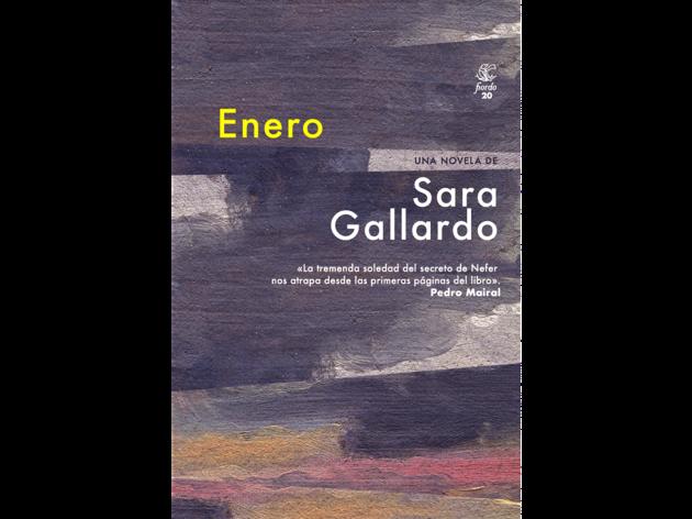 Foto de la portada del libro Enero de Sara Gallardo