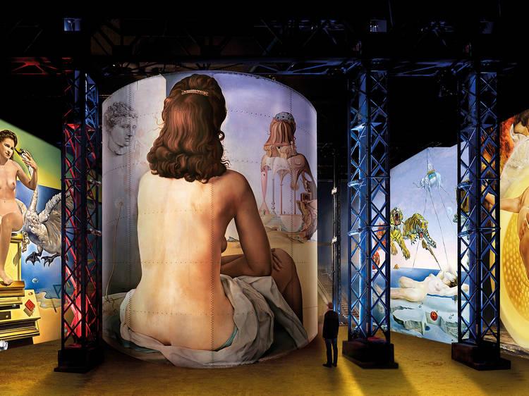 Dalí, l'énigme sans fin