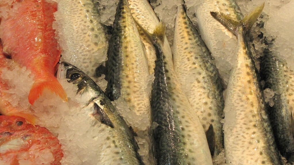 Close up of market fish packed in ice