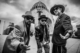 Platicamos con Roco Pachucote sobre su próximo concierto en streaming