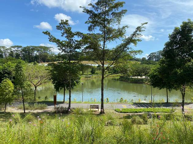 The shortest hikes under 30 minutes in Singapore