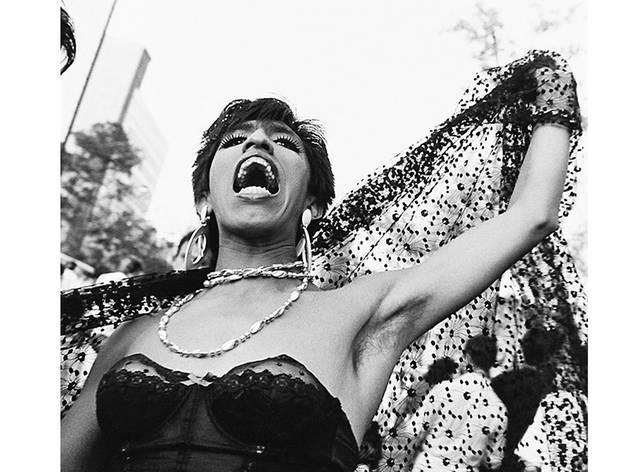 Reinas en disputa (Foto: Cortesía Galería José María Velasco/Yolanda Andrade)