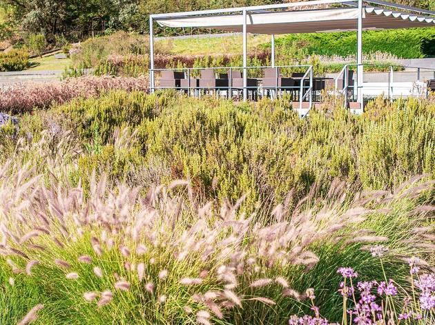 Telhado Verde de Alcântara
