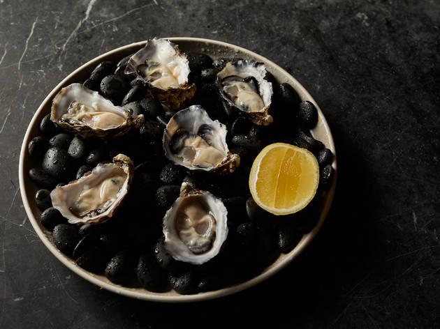 Oysters at Transit Bar