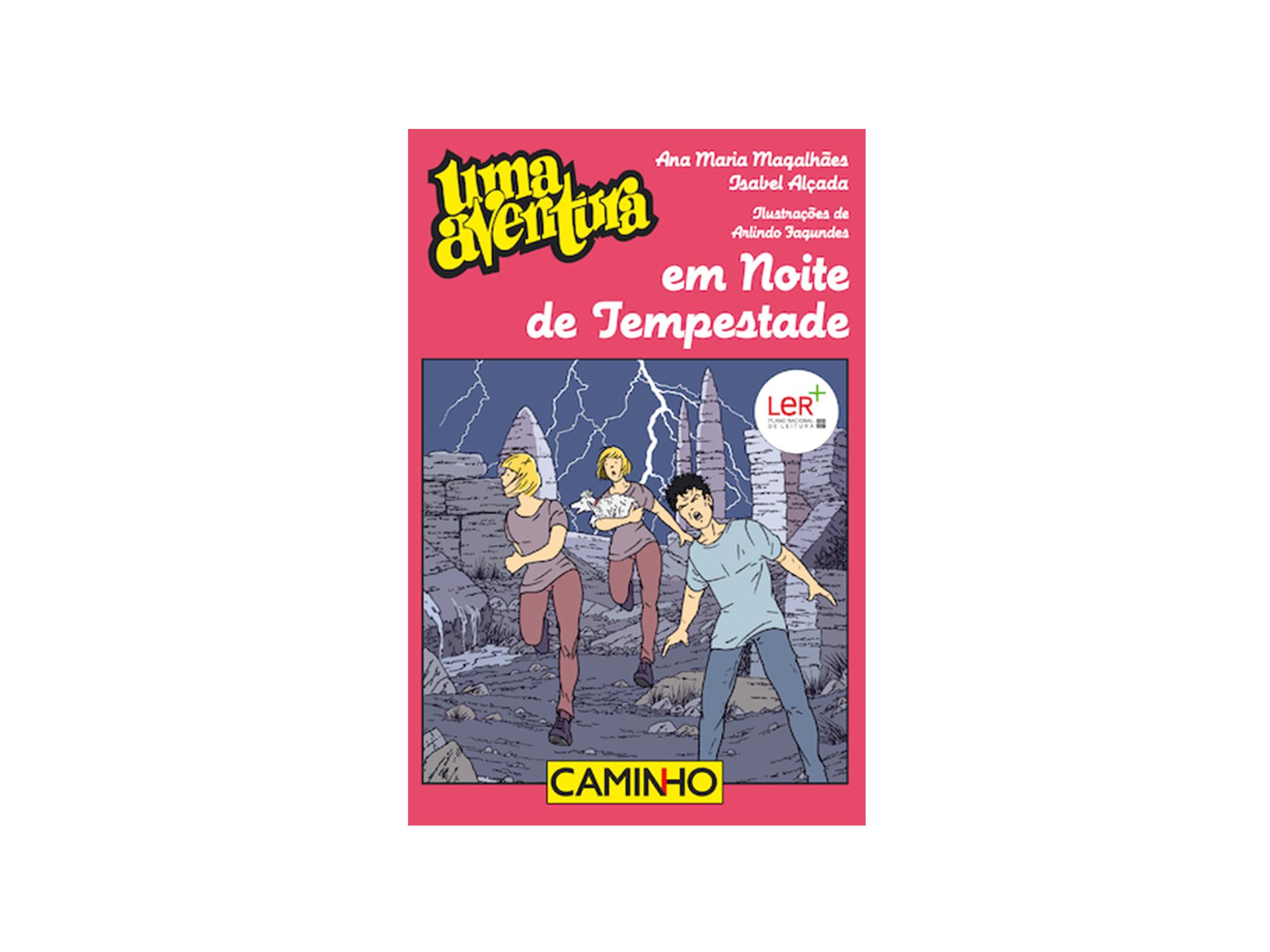 Livro, Uma Aventura em Noite de Tempestade, Ana Maria Magalhães e Isabel Alçada
