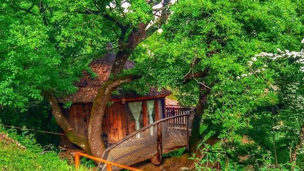 Cabaña en los árboles