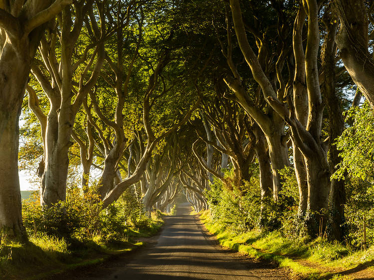Play the 'Game of Thrones' in Northern Ireland
