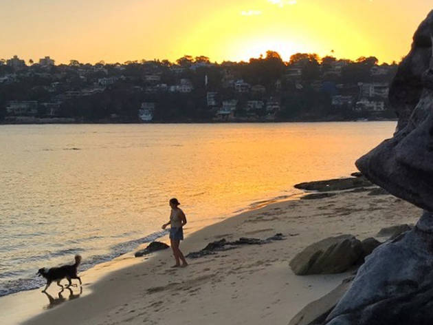 Contarf Beach, dog beach, sunset, beach