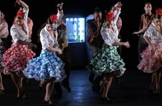 Zarzuela en danza (Fernán Gómez)