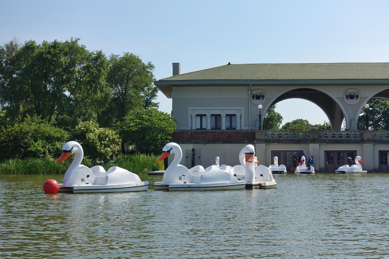 Swan boats on Humboldt Park Lagoon