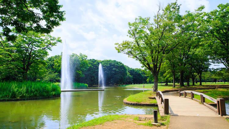 代々木公園が7月の東京五輪期間中ワクチン接種センターに