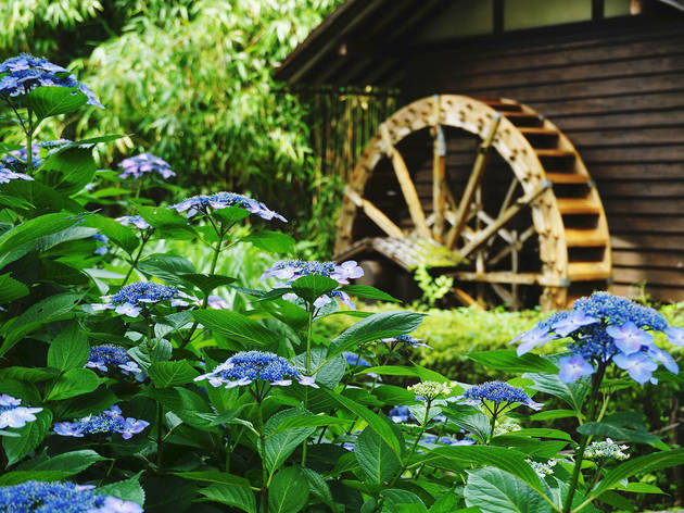 Fuchu City Local Forest Museum