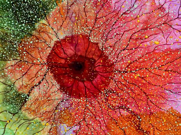 Flowers, de Manuel Valência