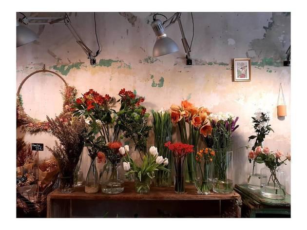 Adhoc flores