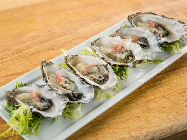Half-shell oysters on a plate