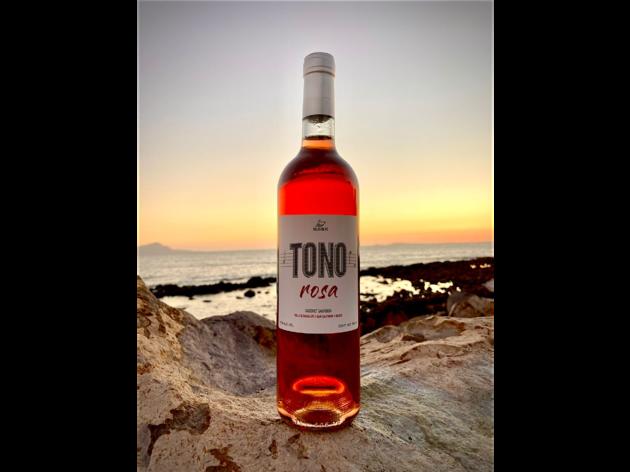 Tono Rosa, Salto de Fe