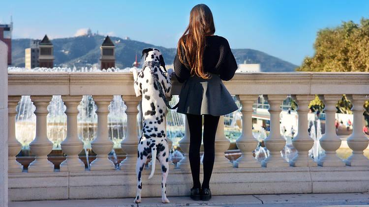 Girl with dog looks at the Placa Espanya