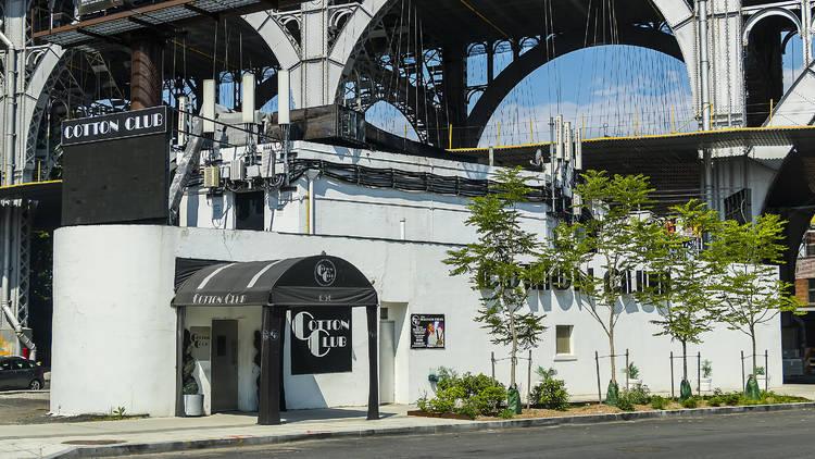 ニューヨークにナイトライフ博物館が誕生か
