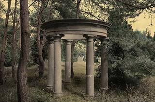 Colectiva. Premios de Fotografía Fundación ENAIRE 2021 (Real Jardín Botánico)