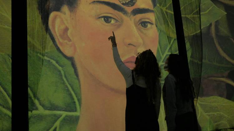 Exposición Frida