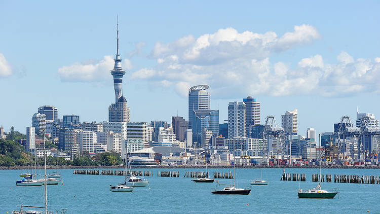 Boats floating in blue water in front of the Auckland skyline on a sunny day, with the Sky Tower on the left