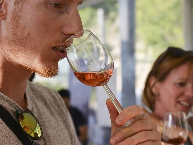 Summer Wine Market