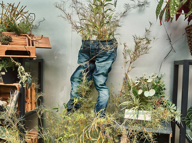 Washi Jeans