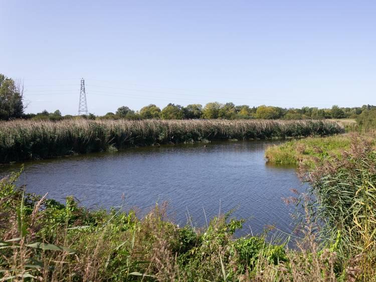 River Stour, Dedham Mill, Manningtree
