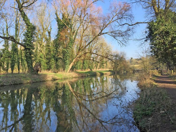 Ten incredible wild swimming spots near London