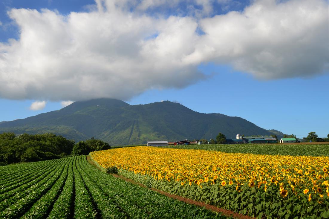 Higashiyama Niseko Village