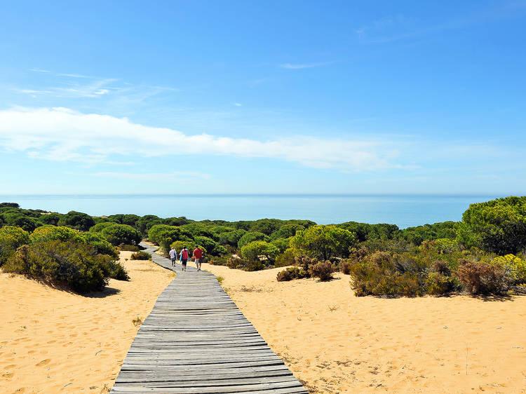 Doñana (Andalucía)