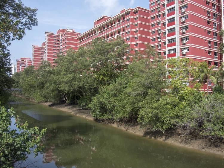 Sungei Api Api and Pasir Ris Park