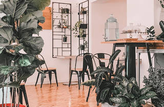 Restaurante, Café, Delicafé