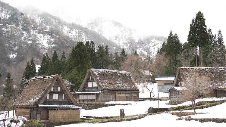 Three thatched roof houses stand in front of trees and a mountain on a snowy day in Ainokura World Heritage Site, Japan