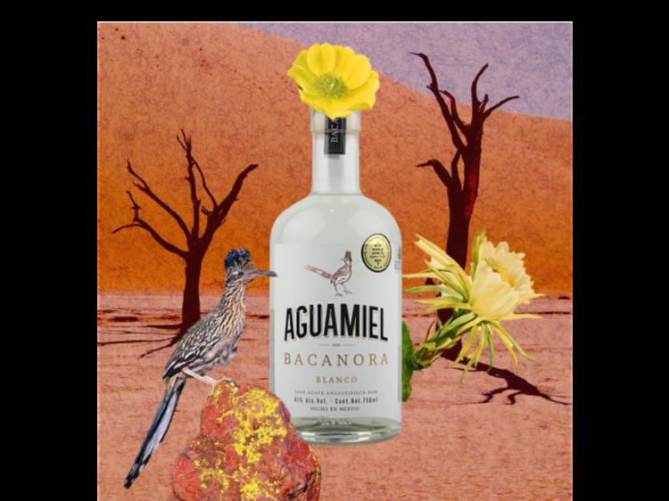 Bacanora Aguamiel con salsas y especias