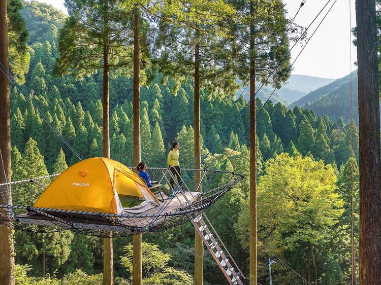 まるで秘密基地、夏休みは木の上に浮かぶキャンプ場へ