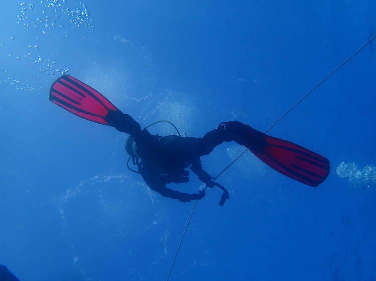 Ir ao fundo do mar com a Ecoalga