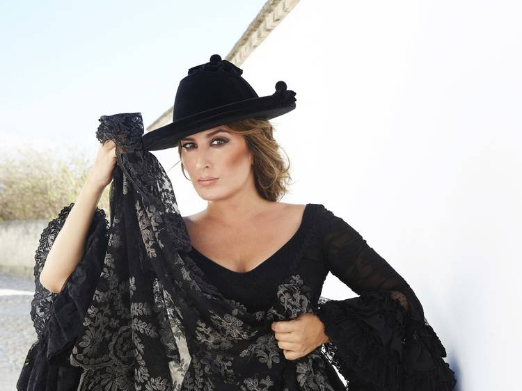 Un inciso flamenco