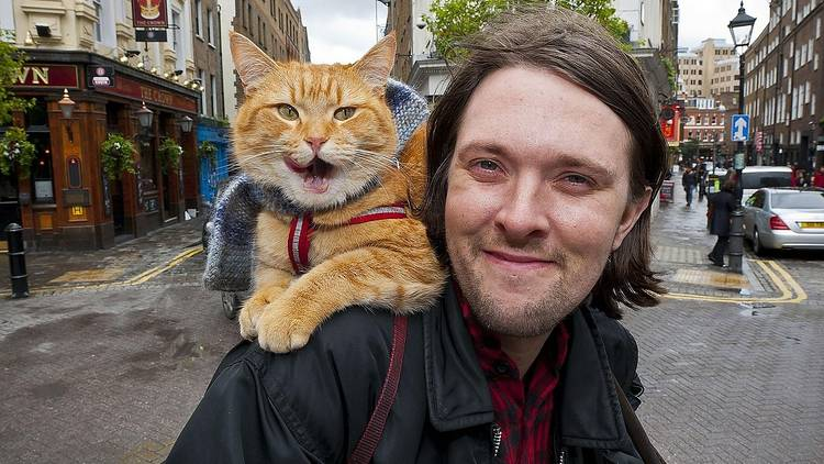 Bob the street cat is getting his own statue.