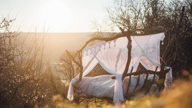 A rustic four poster bed made from tree branches and draped in white canopies sitting in field
