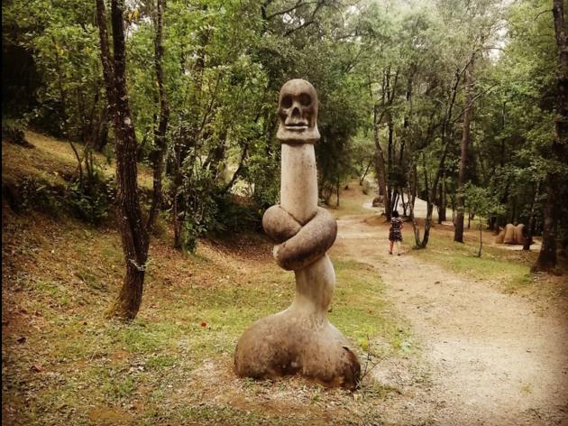 Bosc de Can Ginabreda