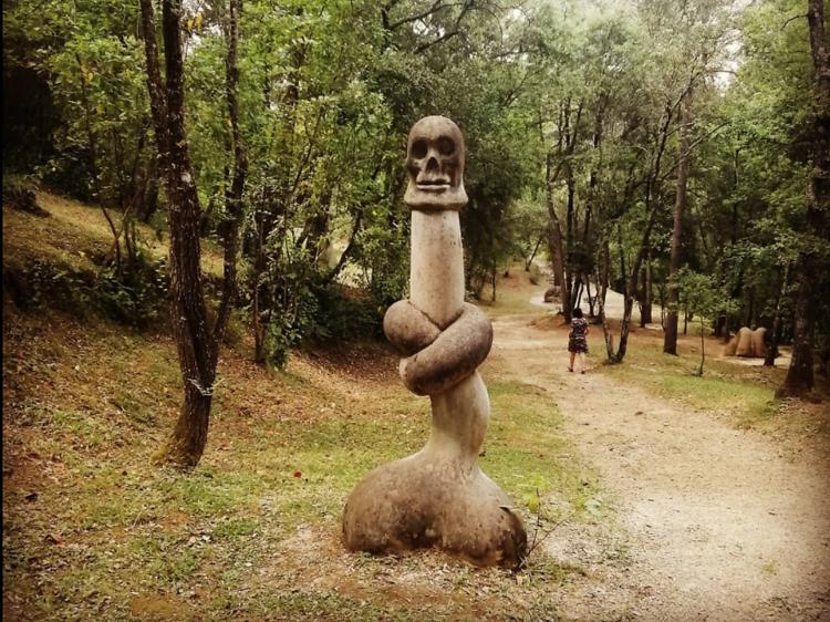 Bosc de Can Ginebreda, Catalonia