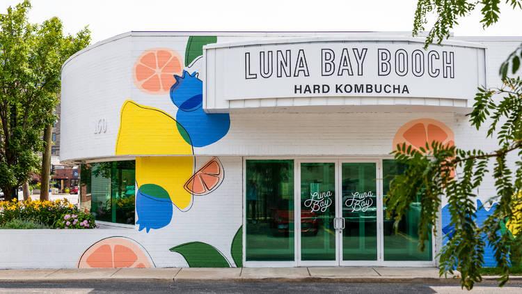 Luna Bay Booch co. Pop-up fulton market