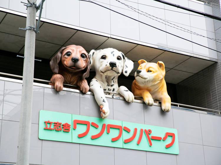 ワンワンパ-クの巨大な子犬