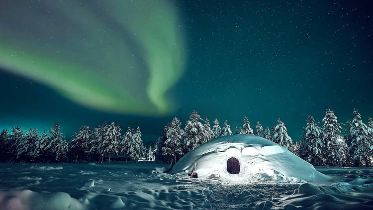Flashing green northern lights above a snowy scene featuring pine trees and an igloo