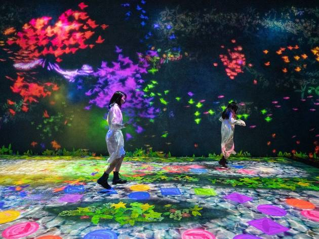 teamLab Borderless now features 25 new and updated artworks