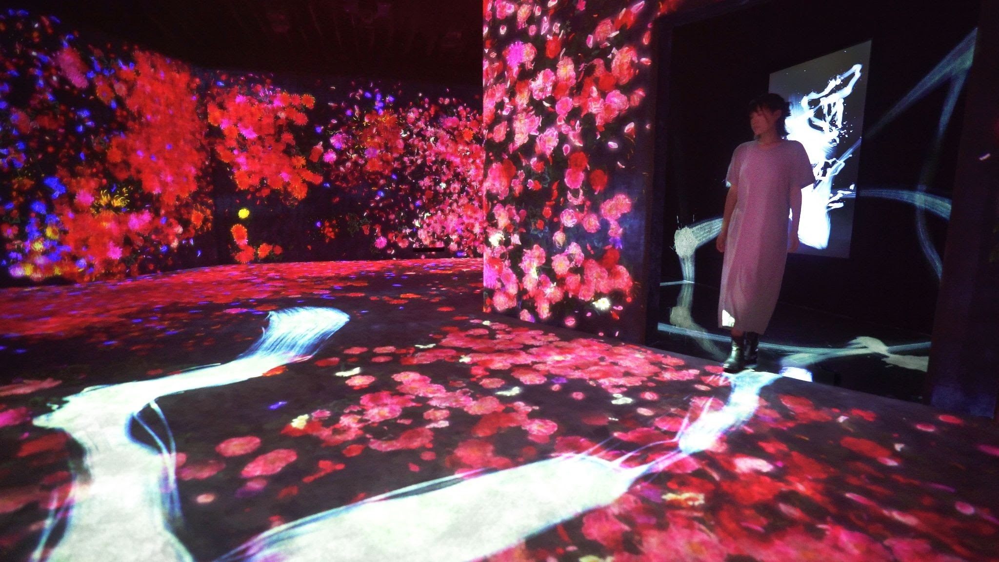 teamLab without borders