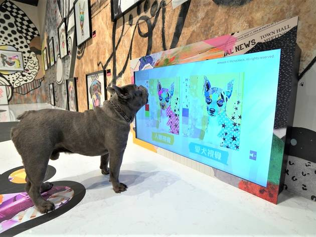 Harbour North Dog Art Gallery