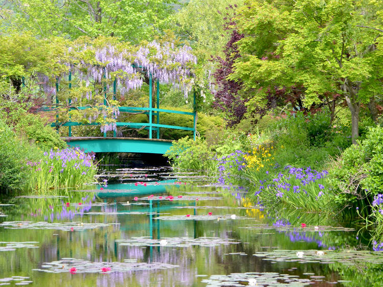 Monet's Garden Marmottan (Kitagawa, Kochi)